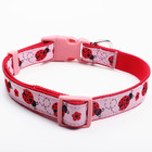 China Supply Luxury Personalized Custom Logo Pet Safety Pink Dog Collar