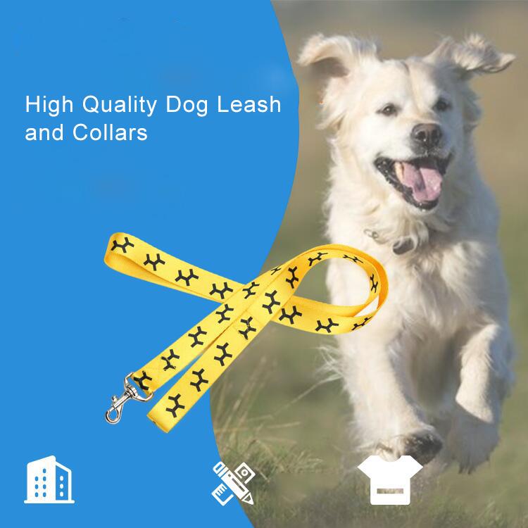 จีนคุณภาพสูง Bungee อุ่นโลโก้ที่กำหนดเองสุนัข Leash