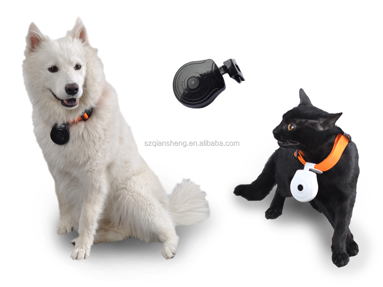 Dog Cat Pet's Video Camera Cam Pet Mini Digital Cam