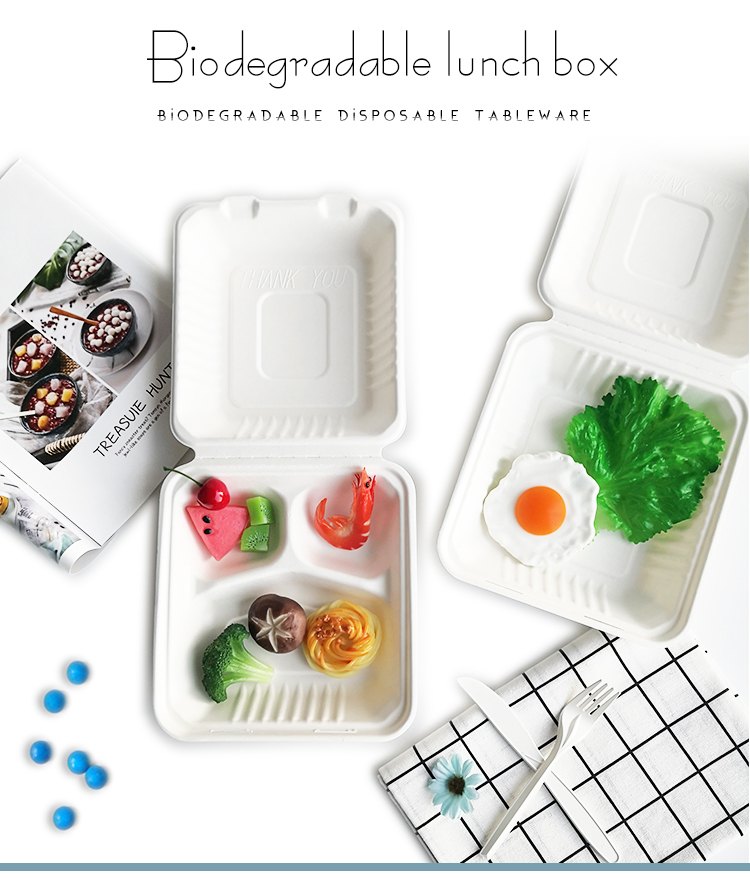 Eco friendly food takeaway box biodegradable lunch box disposable bento box