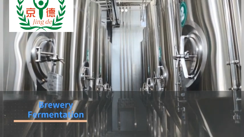 500L bira çıkış günlük küçük bira bira yapma bira ekipmanları ticari kullanım için