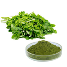 Wholesales organic 100% pure Moringa leaves powder Moringa oleifera leaves powder
