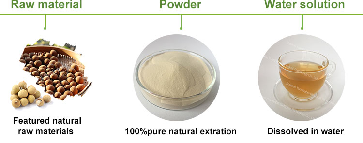 Factory supply organic pure 100% dried longan fruit extract powder
