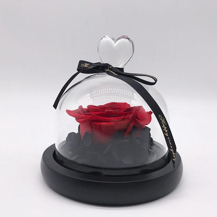Diawetkan Mawar Dalam Stoples Kubah dengan Lampu Led dan Dasar Kayu