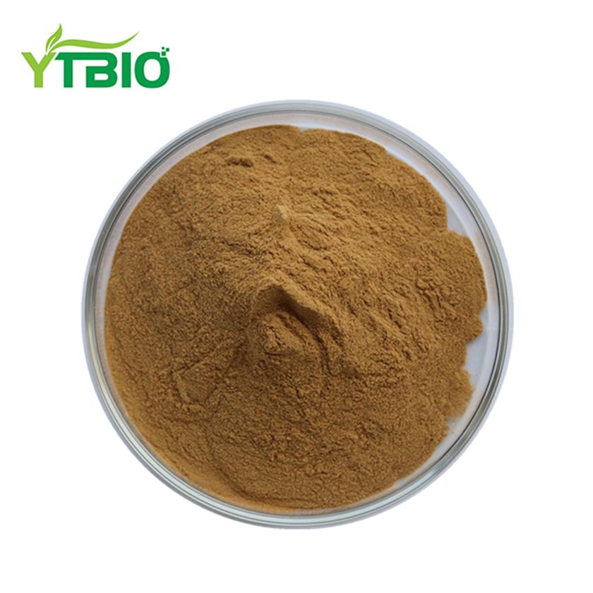 China Hoodia Gordonii Extract Powder Wholesale Alibaba