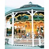 /product-detail/electric-horses-ride-carousel-for-sale-outdoor-commercial-carousel-ride-62327508201.html