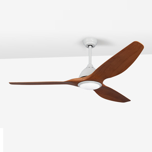 High Class 35W Energy Saving Brushless Motor Decorative Gym 110 LED Smc Cambodia Ceiling Fan With Light And Remote Control