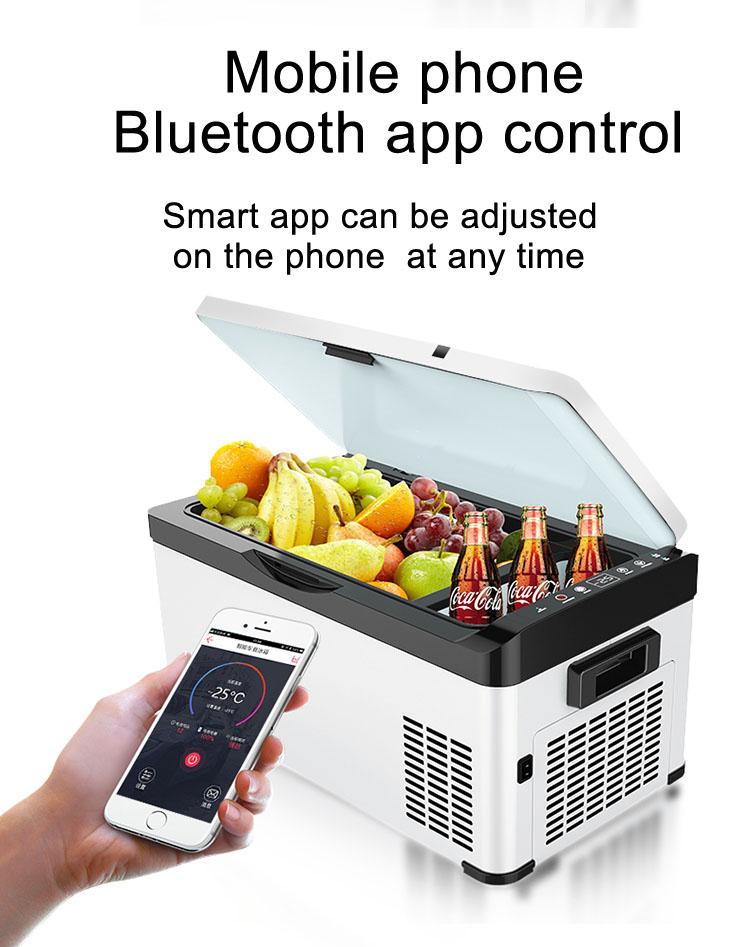 12vdc 220v Bluetooth Both Frozen and refrigerated car truck compressor freezer