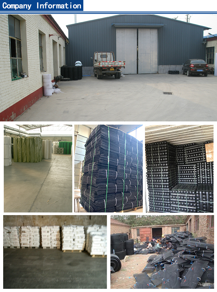 Oyster Mesh ,oyster cage ,oyster basket(factory)