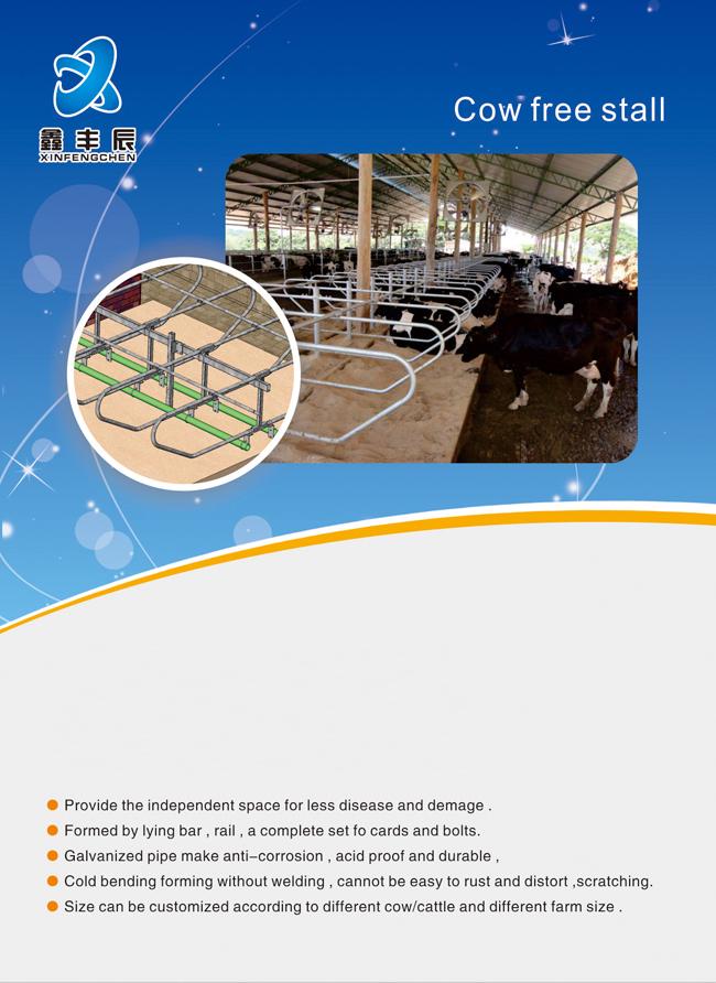Galvanisé ferme de vache laitière équipement vache stalle libre