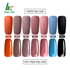 Nail Polish Nail Gel Nail Gel Polish Matte Top Coat 15ml