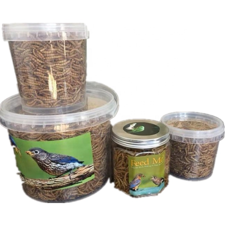 Dried Mealworms/High protein dried meal worm