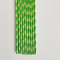 durable biodegradable drinking paper straws bamboo design