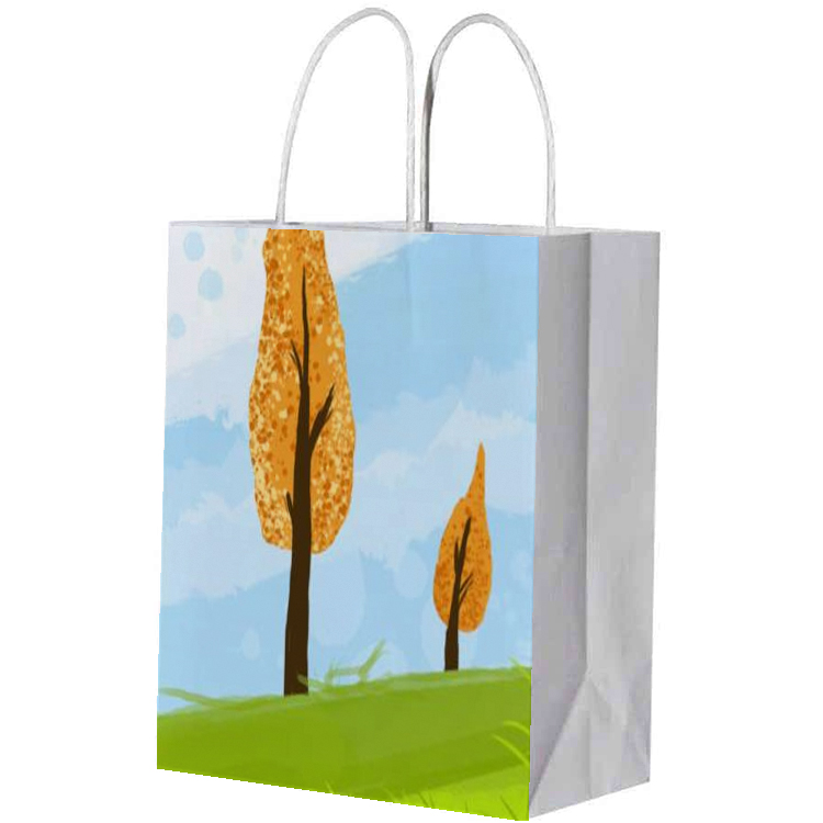 product-Dezheng-eco-friendly multifunction green tea wine flowers paper bags with handle-img-1