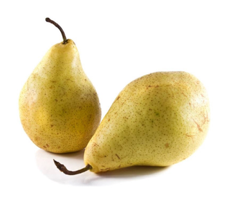 Wholesale Fresh Pear / Ya Pear Fruit Price / Fresh Golden Pear Best Price