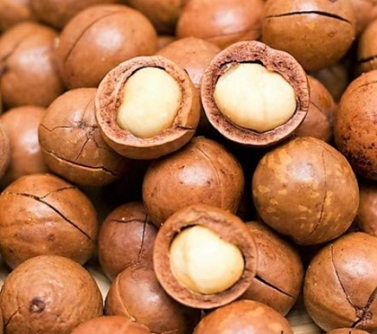 TOP Raw Organic Macadamia Nuts