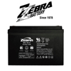 /product-detail/taiwan-zebra-12v100ah-20hr-gel-maintenance-free-rechargeable-battery-62009595681.html