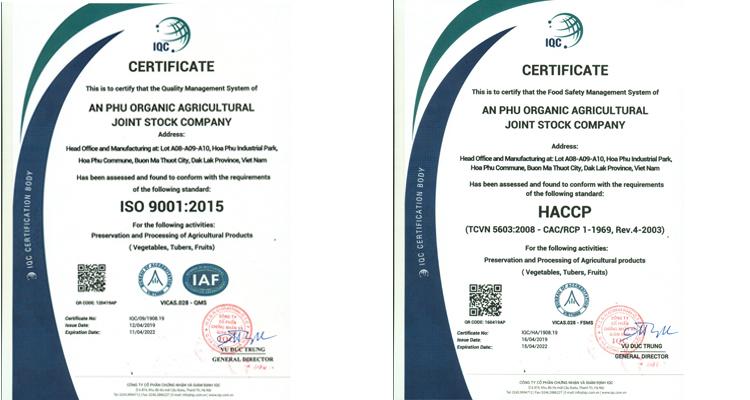 Certification 1.jpg