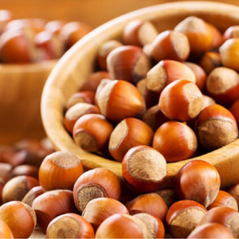 Premium Quality Turkish Natural Hazelnut