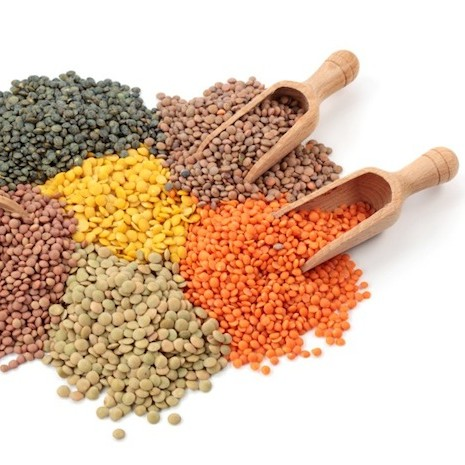 CANADA GREEN AND RED LENTILS