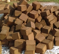 Best Quality Coco Peat/Peat Moss and Cocopeat