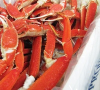 Best Frozen and Live Bairdi Snow Crab