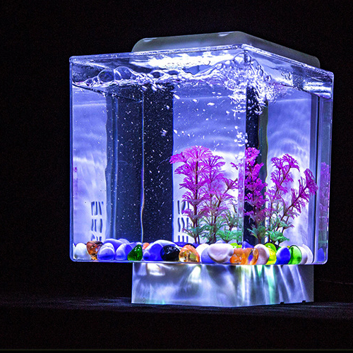 Mini Desktop Acryl LED Licht Decoratie Aquaria Fish Tank