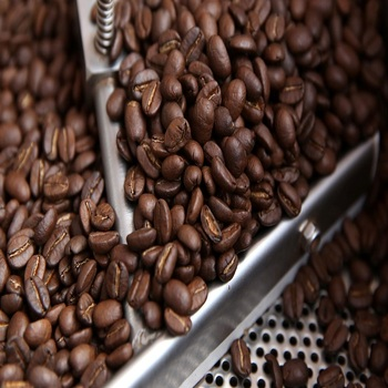 Machine Clean Green Coffee Beans , Raw Coffee Bean Price