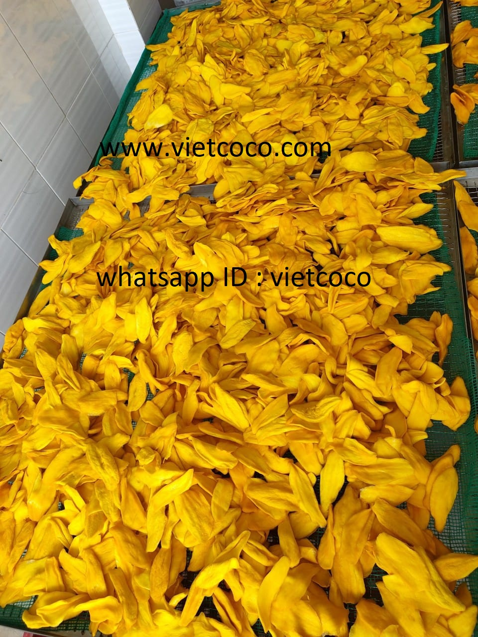 VIET NAM DRIED MANGO