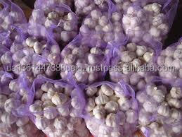 Pure white garlic size 5 to 6 cm  mesh bag 20 kg , New Crop