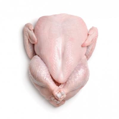Оптовая продажа куры Замороженные HACCP Халяль замороженный весь цыпленок