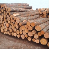 100% Pure Timber Logs Teak Wood / Oak Wood Logs / Pine Wood Logs