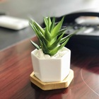 Pot Flower With High Quality Hexagonal White Ceramic Succulent Cactus Plant Pot Flower Planter With Wooden Tray Planter