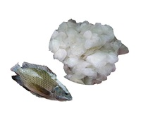 Vietnam Dried Tilapia/ Seabass/ Snakehead Fish Scale High Collagen Extract Ossein