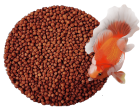GOOD PARTNER GOLD FISH HEALTHY AND BRIGHTEN FORMULA FEED 800G