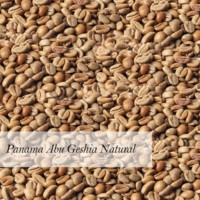 Panama Abu Geshia Natural Arabica Green Coffee Bean Wholesale