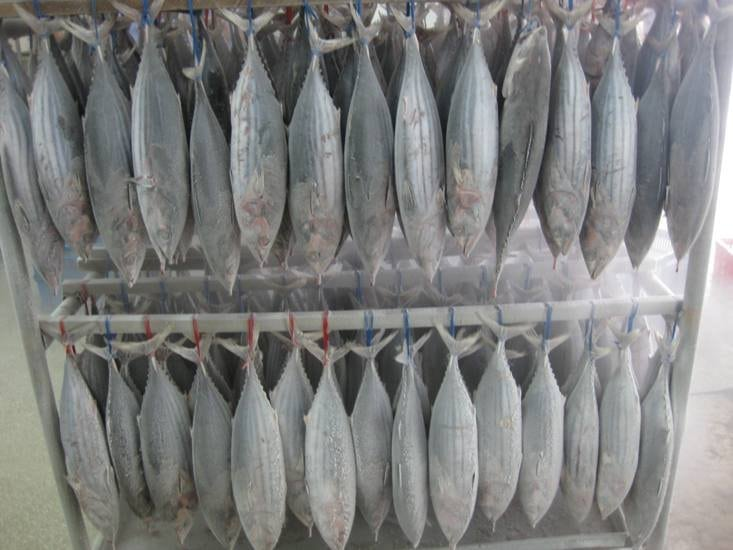 Frozen seafood fresh hairtail frozen ribbon fish 300-500g