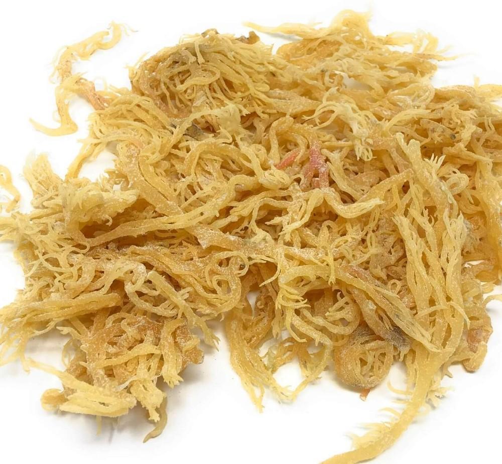 Sea Moss/ Irish Moss for food drink / origin Vietnam ( +84932897045)