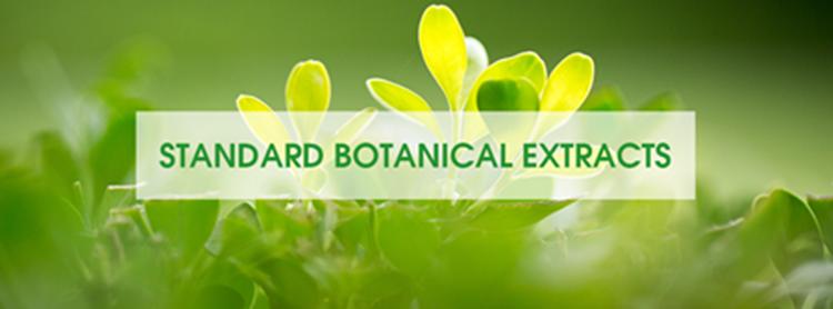 Organic  anthocyanidins 25%  elderberry extract