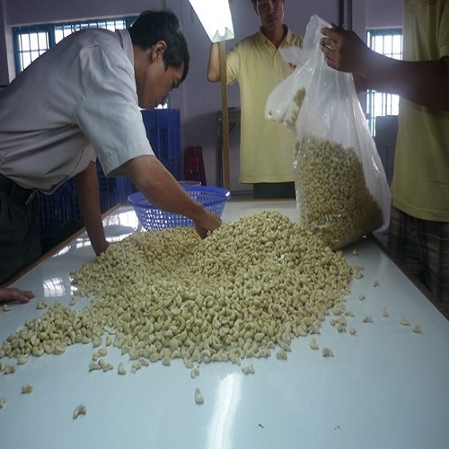 international selling price of cashew nuts the best cashew supplier