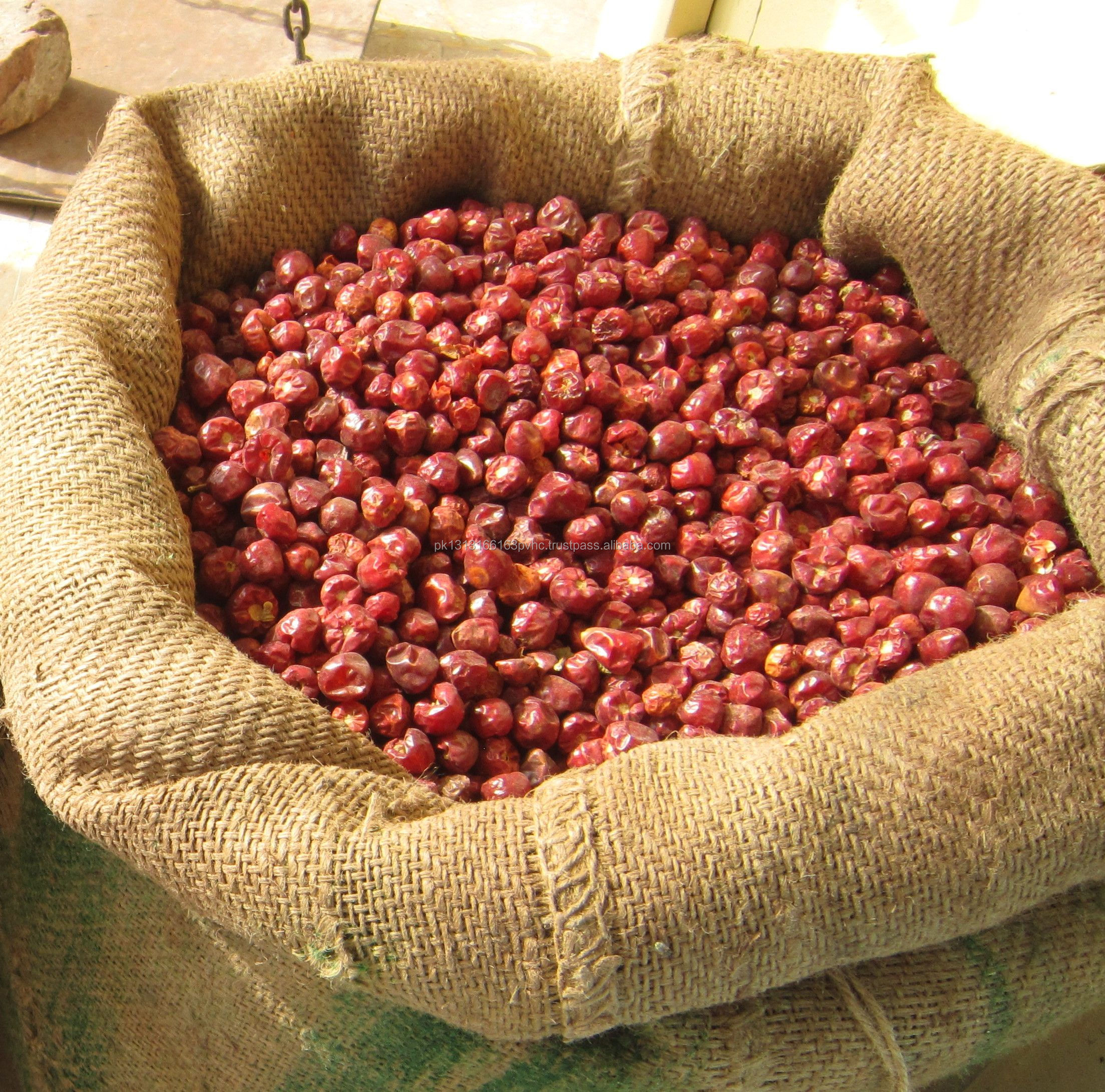 Teja chillies / Pakistani round chili / red round chili