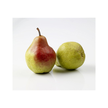 Wholesale Fruit Prices Pears for Bulk Purchase