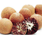 100% natural Areca Catechu Nut /Whatapp:+8493 239 8655