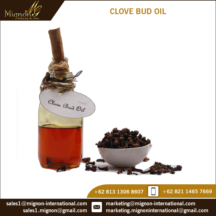 Worldwide Selling ISO Certified Clove Bud Essential Oil for Bulk Buyers