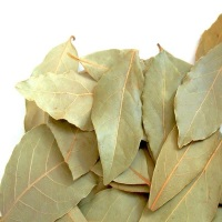 High quality natural spices bay leaf dried at a Low Price