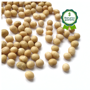 Buy Soya Bean with Best Price