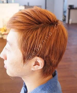 Arshia Henna Untuk Pria Pewarna Rambut Untuk Warna Rambut Buy