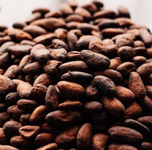 Cocoa Beans Buyers, Cocoa Beans Buyers Suppliers and