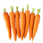 Chinese Fresh Washed Yellow Carrots Export