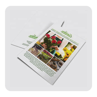 Custom 105gsm Wholesale Cheap A4 Flyer Leaflets Brochures Poster Flyers Card Printing Services